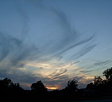 Black Feathery Wispy Clouds at Sunset by Jane Neill-Hancock