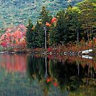 The Basin - White Mt National Forest by T.J. Martin