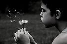 wishes by michelle robertson
