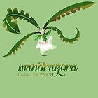Mandragora by Mariotaro Designs