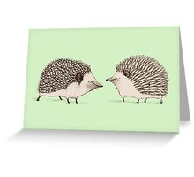Two Hedgehogs Greeting Card