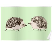 Two Hedgehogs Poster