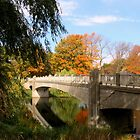 Autumn In Lincoln Park by kkphoto1