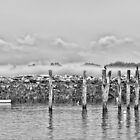 Fog Beyond the Breakwater by Richard Bean