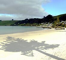 Shadows on Boat Harbour Beach by Graeme  Hyde