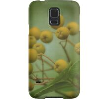 Mountain Ash Berries Samsung Galaxy Case/Skin