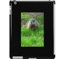 Chuckster iPad Case/Skin