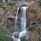 Bisbee Waterfall - September 2014 by Ann Warrenton