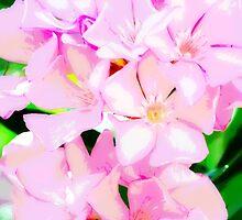 Pretty in Pink by Christina  Ochsner