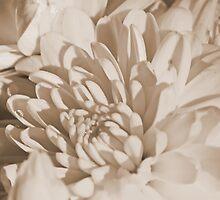 Sepia Mum by Christina  Ochsner