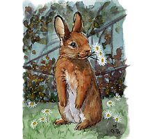 Funny Rabbits - Daisies for You 550 by schukinart
