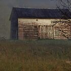 Old Barn in the Fog by Gilda Axelrod