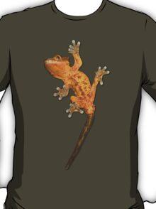 Crested transparent T-Shirt