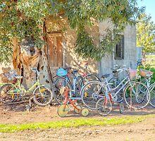 Ready for family bike ride..... by mitpjenkeating