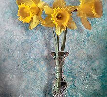 Daffodils  by Paul Woods