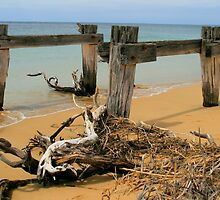 Old Livestock Jetty by TJSPictures