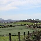Gawler countryside by gaylene