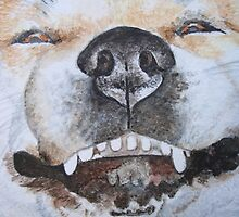 funny cute akita smiling realist dog portrait art by pollywolly