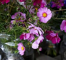 Flowers in Jar (2) by AGODIPhoto