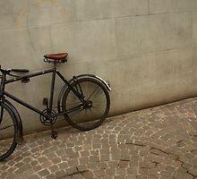 Swiss Bike by TheRetroJunkie