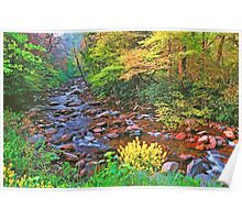 SPRING,W.PRONG LITTLE PIGEON RIVER Poster