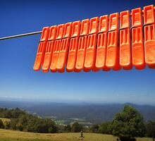 Orange pegs on Ruth's Washing line by Clare Colins