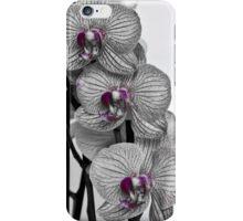 A splash of purple iPhone Case/Skin