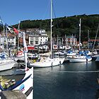 Picturesque Scarborough Harbour - North Yorkshire by Sue Gurney