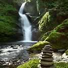 Wales - Dolgoch Falls 2 by Angie Latham