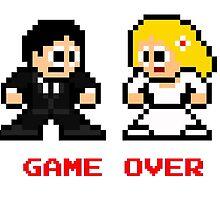 8-bit Bride and Groom-Gave Over by 8 Bit Hero