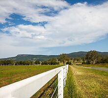 Leading lines - Boonah, QLD by LizSB