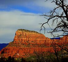 Sedona's Beauty by Charmiene Maxwell-batten