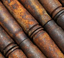 Rusty Shells by zingarostudios