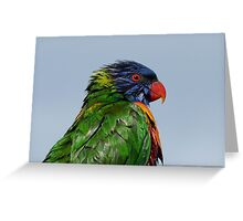 Plenty to Smile About ! Greeting Card