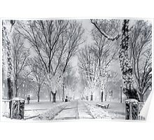 Snow's path down Comm Ave Poster