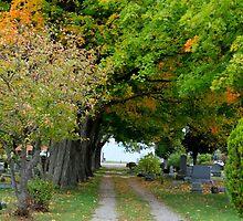 Trail Through the Graveyard by jjastren