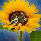 Sweet sunflower by LudaNayvelt