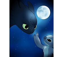 How to Train Stitch's Dragon Photographic Print