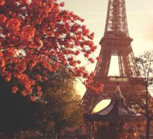 Evening in Paris Sticker