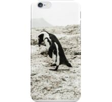 Penguins of Simons Town (1) iPhone Case/Skin