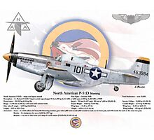 North American P-51 Mustang Photographic Print