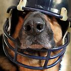 Ready for the Superbowl by Marija