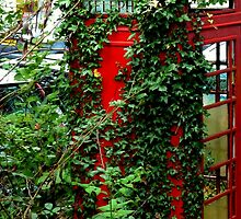 Overgrown Phonebox by Charmiene Maxwell-batten
