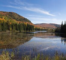 Fall Colours in Canada - Tremblant, Quebec by Josef Pittner