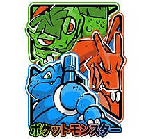 CLASSIC POCKET MONSTERS Photographic Print