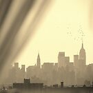 New York City Birds, through my window by Alberto  DeJesus
