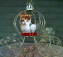 THE PURRRFECT PRINCESS IN HER CARRIAGE>>CAT>FELINE PILLOW AND OR TOTE BAG by ✿✿ Bonita ✿✿ ђєℓℓσ