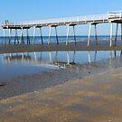 Beach Jetty, Hervey Bay by hans p olsen