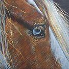 The Soul Seeing Eye by Tahnja