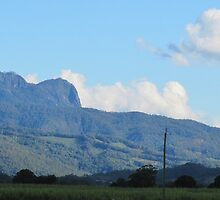 Afternoon Sun on Mt. Warning. Murwullimbah. N.S.W. Nth. Cst. & Hinterland. by Rita Blom